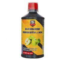 Glucosamine & Chondroitin & MSM (500мл)